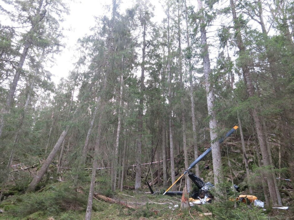 Robinson R44 LN-OGF: The accident site seen toward the southwest. The 30-meter tree that was knocked sideways is shown to the left in the picture (Credit: NSIA)