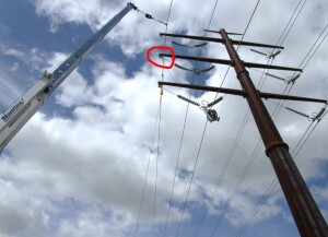 Powerline to be Moved by Haverfield Aviation MD500D/H369D N9159F (Credit: NTSB)